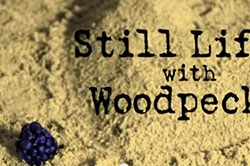 Title sequence, Still Life with Woodpecker, After Effects